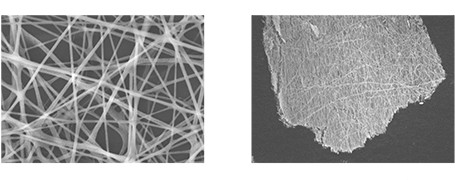 Multi-functional Applications of Lead-free Ferroelectric KNbO3 Nanofibers