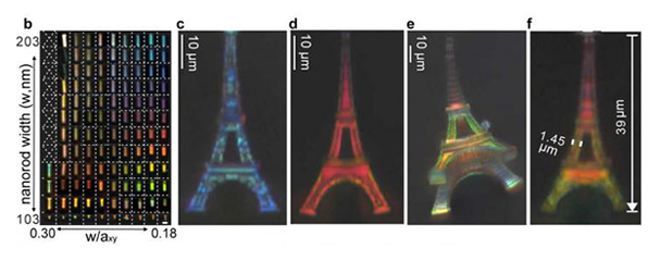 Structural colour printing of 3D microscale objects by shrinking photonic crystals