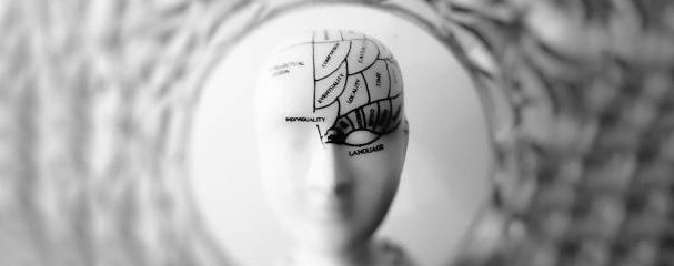 SUTD research shows evidence that bilingualism delays the brain's aging process